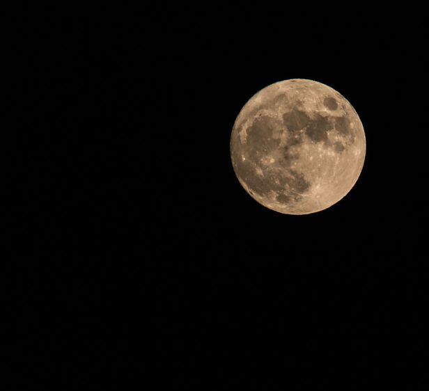 800px-moon_2015_281600851024029